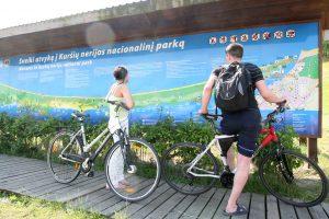 Dėl dviračių takų Smiltynėje – klausimai