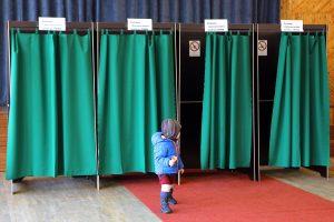 Seimo rinkimuose dalyvaus 16 partijų, trys nepateikė dokumentų