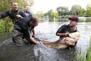 Žuvų gelbėtojai verti nominacijos?
