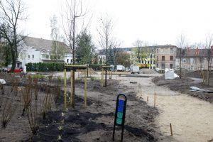 Vydūno skvere sodinami medžiai