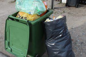 Atliekų rūšiavimas Klaipėdos individualiose valdose – be priekaištų