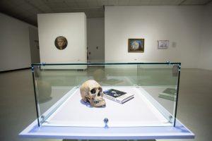 Ekskursijos po tris šiuolaikinio meno parodas Klaipėdoje
