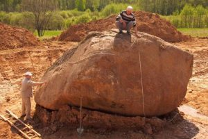 Atkastas Utenos milžinas stebina savo dydžiu