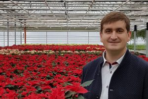 Kalėdų nuotaika – ir gėlių ūkiuose