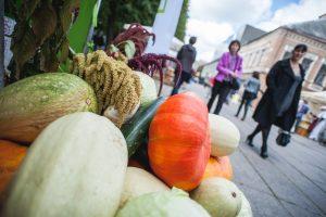 Kaunas rudenį pasitiks kitaip