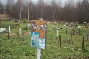 Gyvūnų kapinaitės – kauniečių utopija?