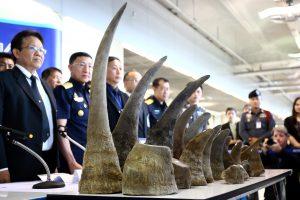 Tailande konfiskuota 5 mln. dolerių vertės raganosio ragų siunta