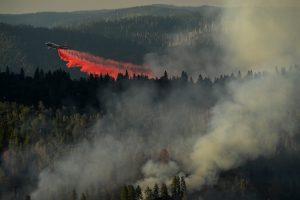 Kalifornijos regione gaisrai sunaikino 10 namų