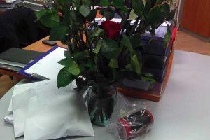 Iš gėlių kiosko pavogtas rožes vaikinai padovanojo merginoms