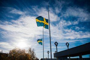 Ar Baltijos šalių saugumui svarbi Švedija – pakankamai saugi?