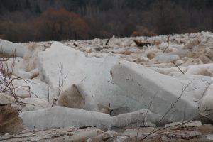 Minijos ledonešis vos nenunešė pėsčiųjų tilto