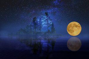 Dienos horoskopas 12 zodiako ženklų (sausio 11 d.)