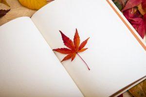 Ką skaityti rudens vakarais? (knygų apžvalga)