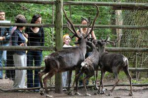 Pasaulinė gyvūnijos diena – egzotiškiausioje Kauno vietoje