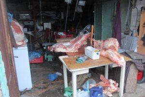 Veterinarai Šiauliuose rado nelegalios mėsos