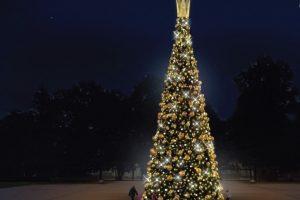 Druskininkų bendruomenei ir kurorto svečiams  – įspūdinga karališka Kalėdų eglė