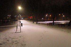 Prieš Velykas į Kauną sugrįžo žiema