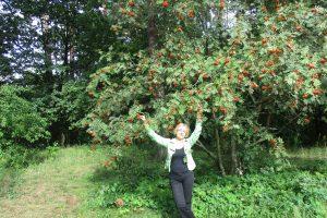 Kokias gamtos gėrybes ir kaip rinkti rudenį?