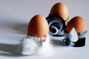 Kas sveikiau: putpelės ar vištos kiaušinis?
