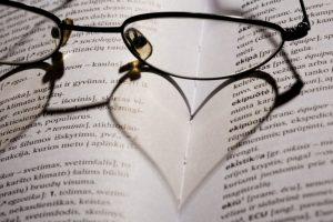 Lietuviški žodžių atitikmenys prigis tada, kai juos kurs savo sričių profesionalai
