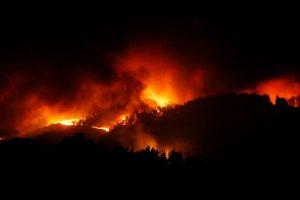 Miškų gaisrai Albanijoje kelia grėsmę nacionaliniam parkui