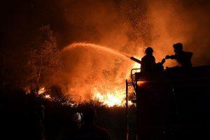 Graikijoje stiprus vėjas trukdo gesinti miškų gaisrus