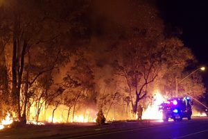 Sidnėjaus apylinkėse siaučia didžiulis krūmynų gaisras