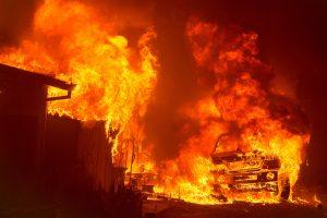 Karščio alinamoje Kalifornijoje siautėja miškų gaisrai