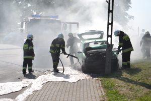 Pakaunės ugniagesiai sėmėsi patirties Punske