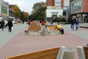 Debreceno aikštėje prapuolė berželiai