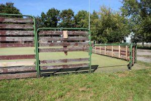 Suniokota tvora – pačių gyventojų reikalas