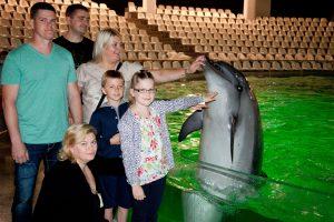 Jūrų muziejuje tiriamas terapijos poveikis delfinams