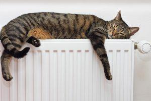 Šilumos tiekėjai: sugrįžta anksčiau atsijungę vartotojai