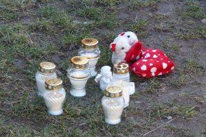 Tragedija Šilutėje: šuo mirtinai sukandžiojo kūdikį