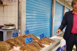 Iš žuvų išgyvenanti Pajūrio Bulonė