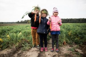 Šį pavasarį vaikų darželiuose atsiras šiltnamiai