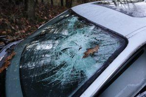 """Šilutės rajone susidūrė """"Toyota"""" ir sunkvežimis, žuvo moteris"""
