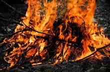 Ugniagesiai prašo saugiai kūrenti laužus ir kepsnines