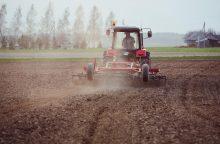 Seimas žada apsispręsti, ar naikinti žemės pardavimo saugiklius