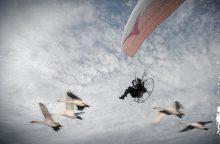 """Ekspedicija """"Gulbių skrydis"""" pasieks Lietuvą"""