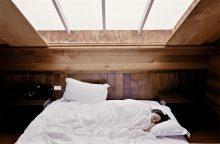 Blakių invazija: ar esate saugūs savo lovoje?