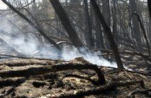 Paaiškėjo, kas sukėlė nedidelį gaisrą Pervalkoje