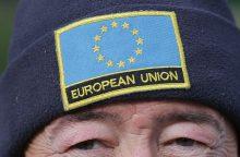 Apklausos: euroskeptiškos jėgos sutvirtins savo pozicijas EP rinkimuose