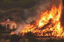 Per didžiulį gaisrą Kalifornijoje žuvo ugniagesys