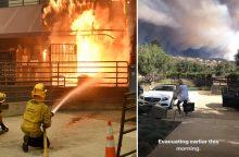 Dėl gaisrų Kalifornijoje tvyro chaosas: namus palieka ir garsenybės