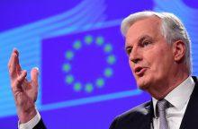 """Europos Komisijos atstovas paskelbė """"Brexit"""" susitarimo datą"""