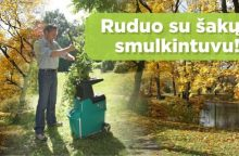 Šakų tvarkymas rudenį: naudingi patarimai