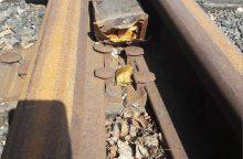 """Netikras pavojus: """"Aras"""" sostinės geležinkelio stotyje sprogmenų neaptiko"""
