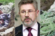 Lietuvoje žinomo verslininko ir politiko įmonės kieme – užkastos atliekos