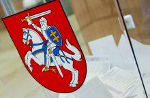 Per Seimo rinkimus laukiama permainų, bet ne mažesnių eilių
